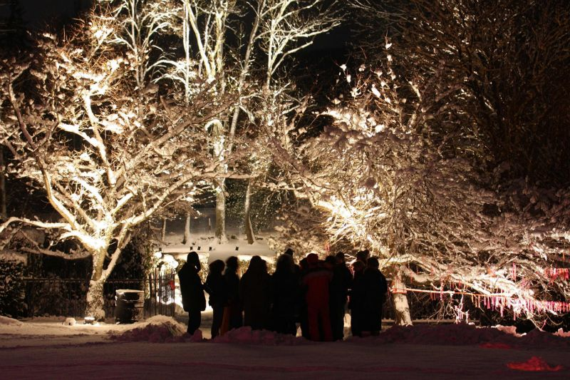 The saint amarin valley christmas in southern alsace for Jardin wesserling